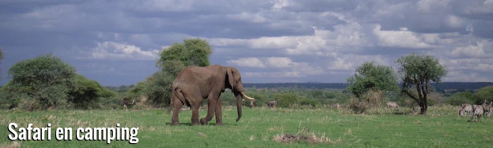 Exploration de la Tanzanie en safari camping