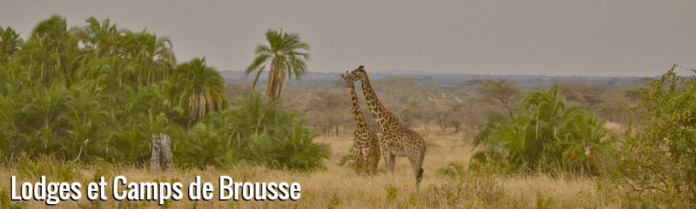 La Tanzanie à son zénith