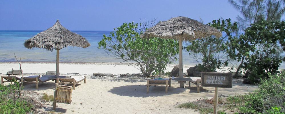 chumbe-beach