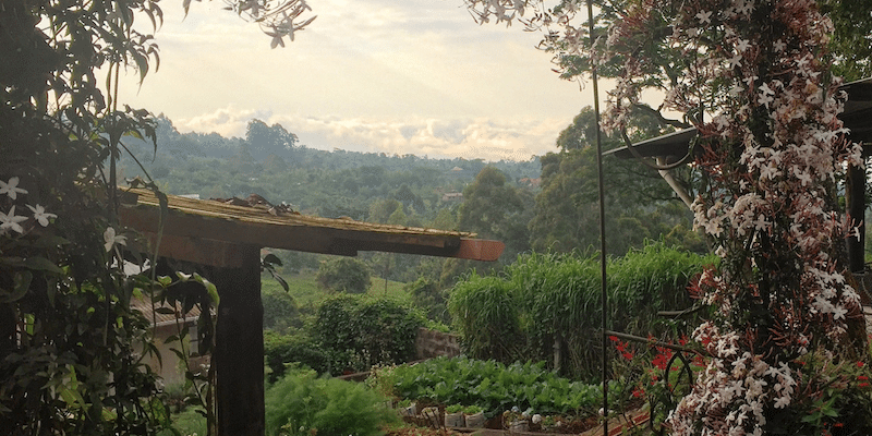 View on the Kilimanjaro foothills from Mbahe Farm cottages